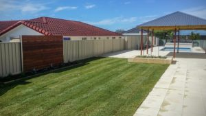Soil Preparation for turf Geographe Landscaping, Turf Gallery