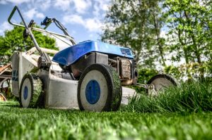 geographe landscapes winter garden tips - mow your lawn
