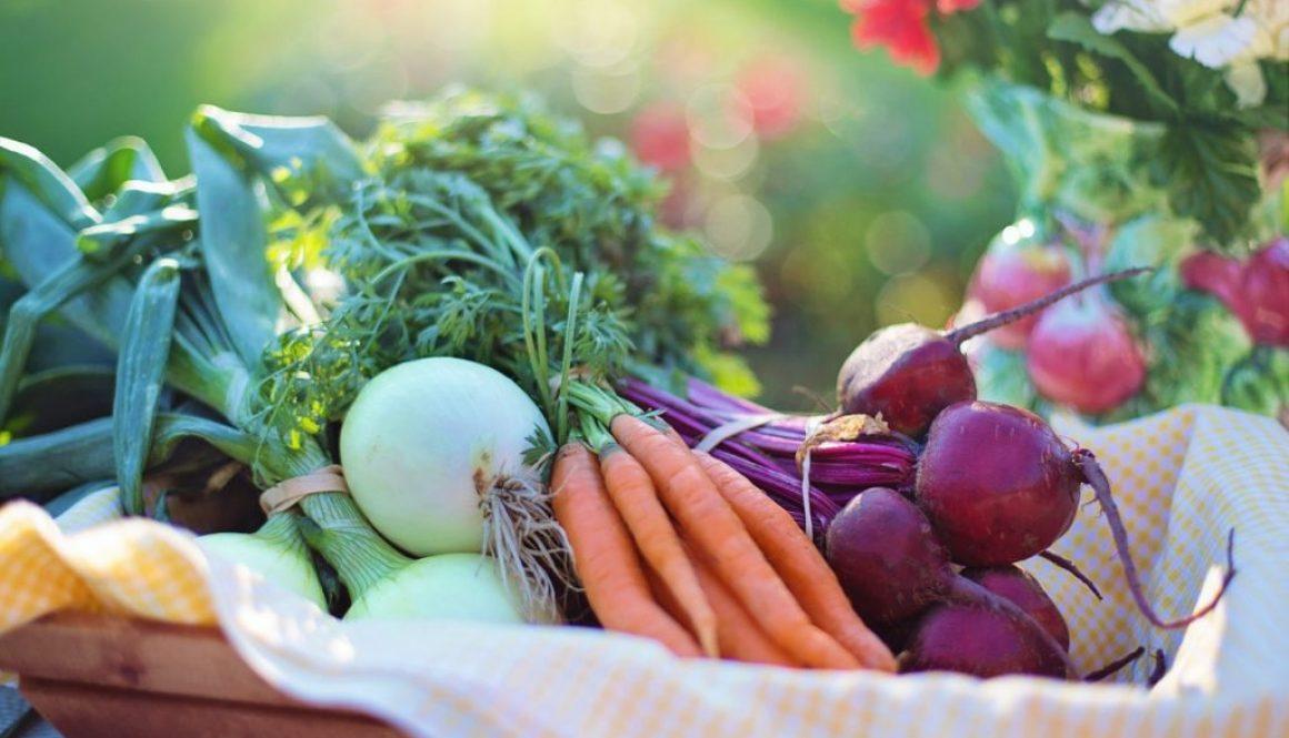winter vegetables - winter gardening - australia - geographe landscapes