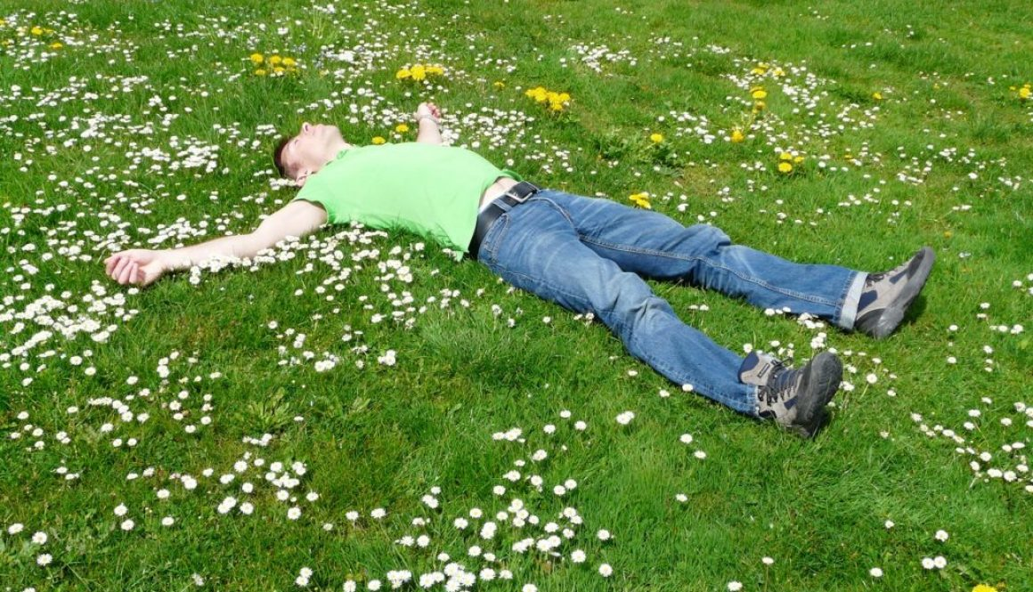 how your garden can relax your mind